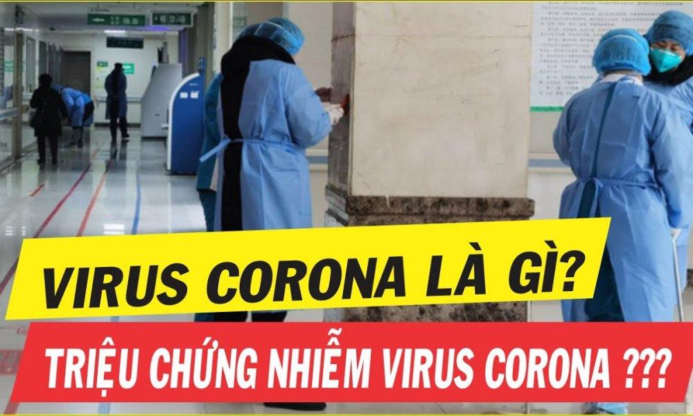 Image result for corona là gì