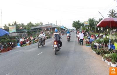 Nâng cấp tuyến đường Quốc Lộ 57 (QL57) Bến Tre Vĩnh Long
