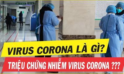 Virus Corona là gì? Triệu chứng Corona bệnh viêm phổi & cách phòng tránh