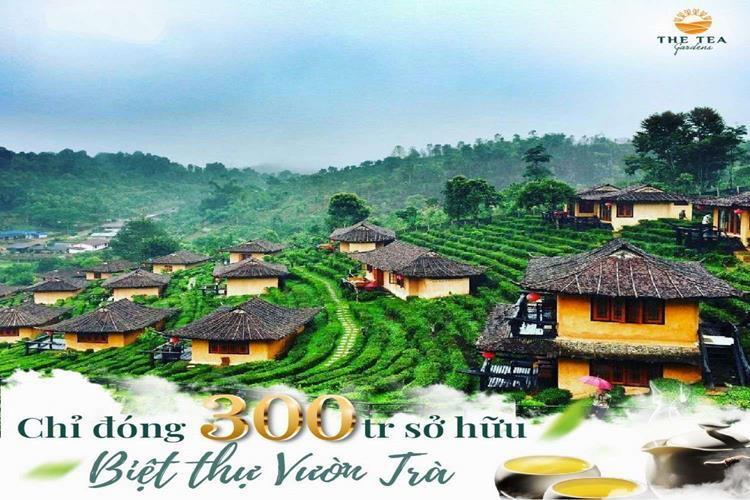 Chỉ đóng 300 triệu sở hữu biệt thự vườn trà The Tea Gardens