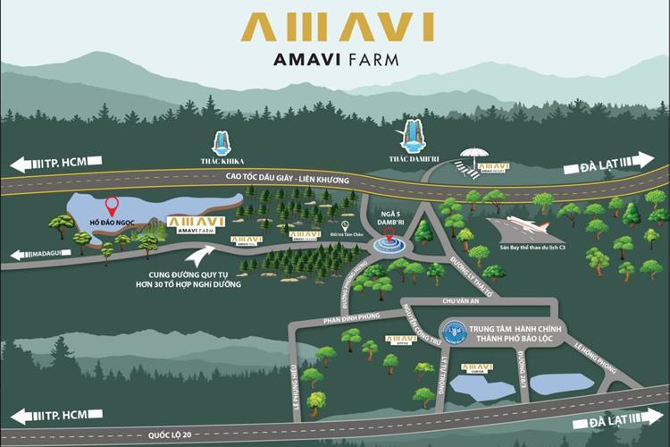 Amavi Farm Bảo Lộc